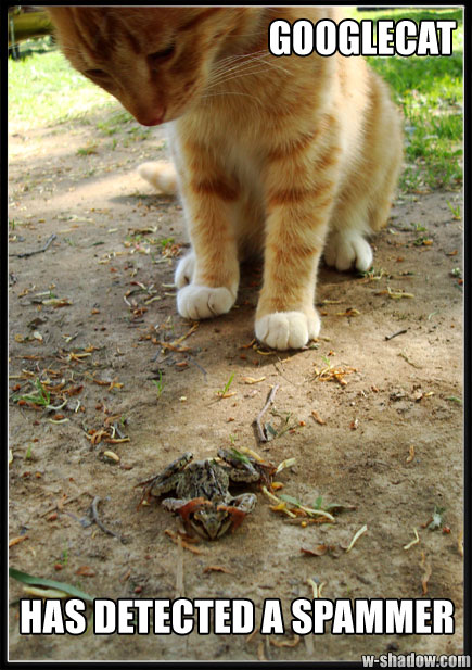 A picture of a cat staring down at a frog, captioned in the unmistakable LOLCats manner. It is symbolic of the eternal struggle between search engines and blackhat webmasters. How is that for a description?